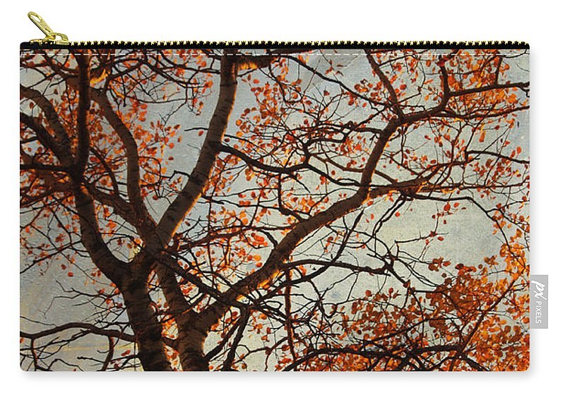Fall Carry-all Pouch featuring the photograph Summing Nature Call by The Artist Project