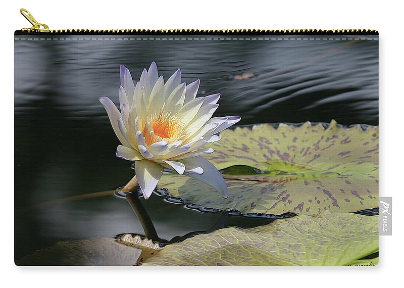 Water Lily Carry-all Pouch featuring the photograph Sun Kissed Allure by Yvonne Wright