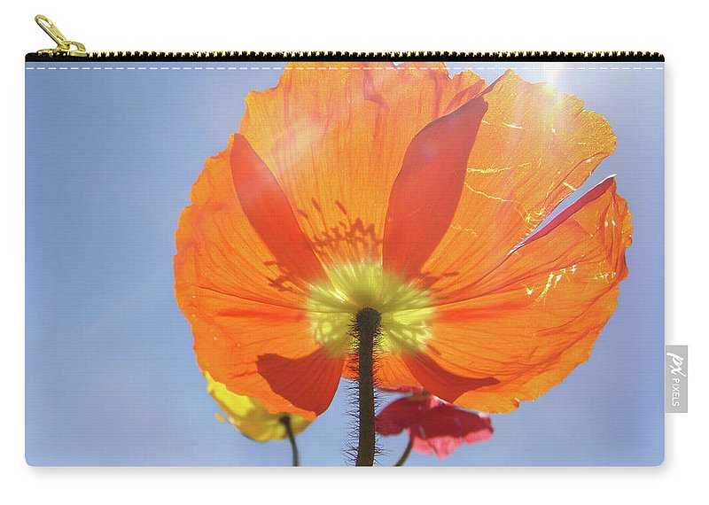 Poppy Carry-all Pouch featuring the photograph Sunburned by Donna Blackhall