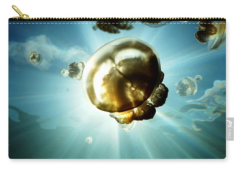 Marine Life Carry-all Pouch featuring the photograph Sunburst Jelly by Mumbles and Grumbles