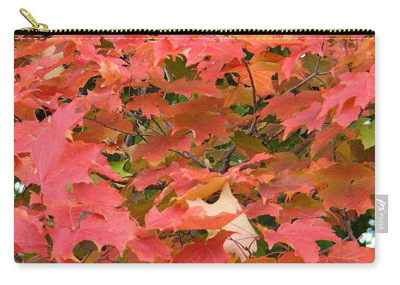 Leaves Carry-all Pouch featuring the photograph Sunburst by Kelly Mezzapelle