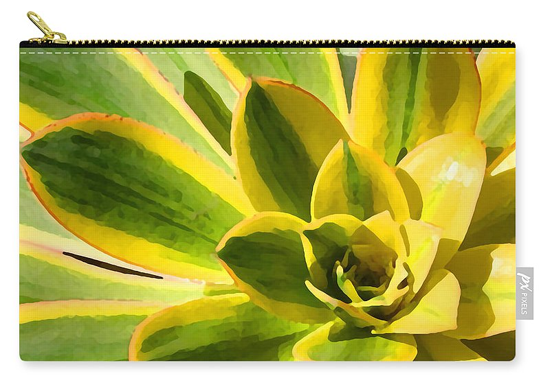 Landscape Carry-all Pouch featuring the photograph Sunburst Succulent Close-up 2 by Amy Vangsgard