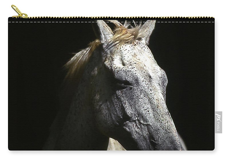 Horse Carry-all Pouch featuring the photograph Sundance by Jim Cazel
