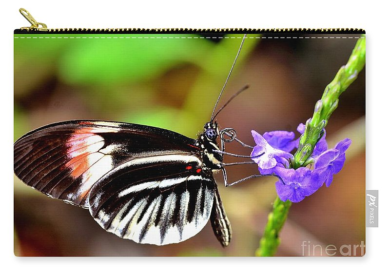 Wings Carry-all Pouch featuring the photograph Sunday Sip by Lisa Renee Ludlum