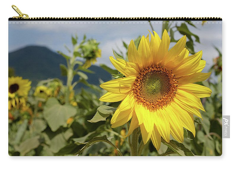 Blue Ridge Carry-all Pouch featuring the photograph Sunflower And Peaks Of Otter by MotionOne Studios
