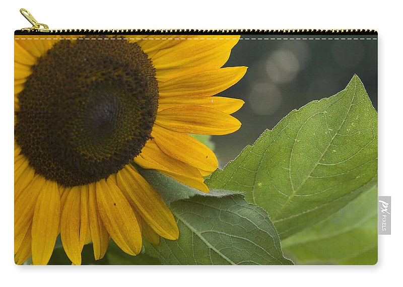 Flower Nature Farm Yellow Bright Sunflower Green Leaf Leaves Close Garden Organic Happy Carry-all Pouch featuring the photograph Sunflower by Andrei Shliakhau