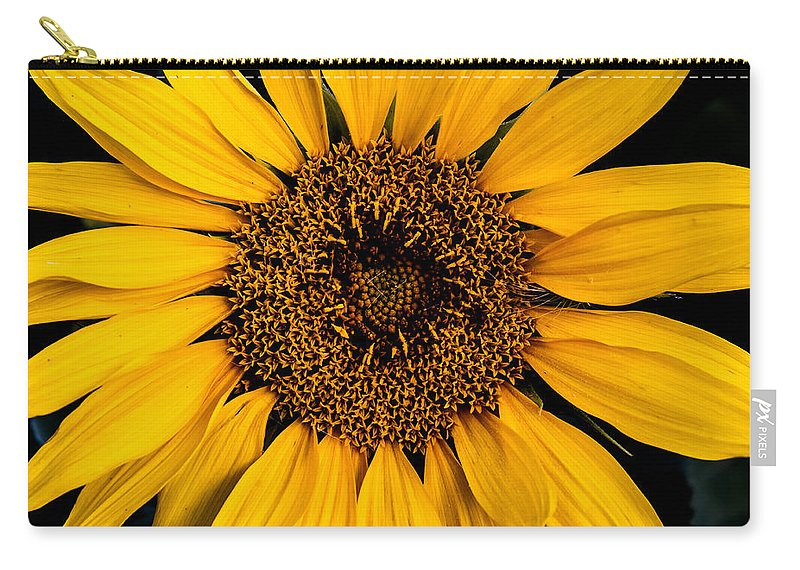 Nature Carry-all Pouch featuring the photograph Sunflower by Gary Lengyel