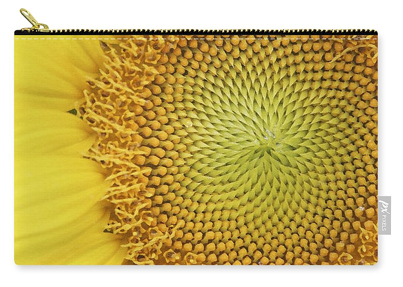 Sunflower Carry-all Pouch featuring the photograph Sunflower by Margie Wildblood