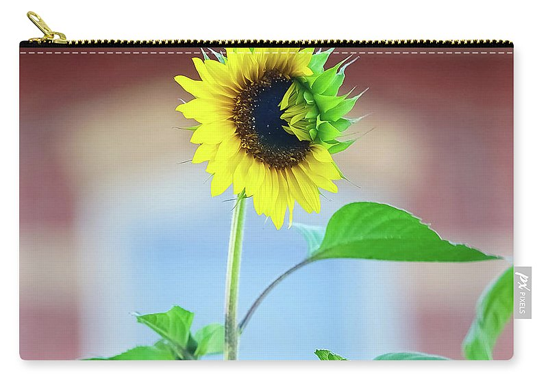 Outdoors Carry-all Pouch featuring the photograph Sunflower by Maria Costello