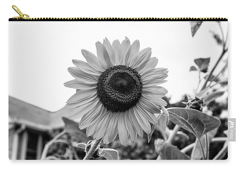 Carry-all Pouch featuring the photograph Sunflower by Marvin Borst