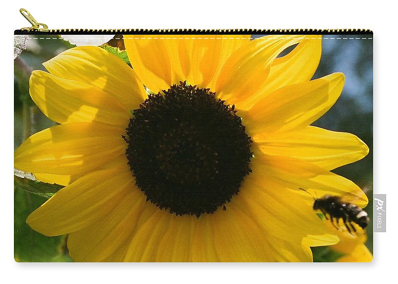 Flower Carry-all Pouch featuring the photograph Sunflower with Bee by Dean Triolo