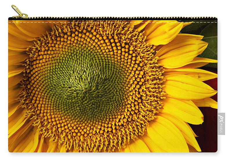 Sunflower Carry-all Pouch featuring the photograph Sunflower With Old Key by Garry Gay