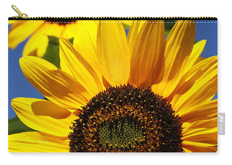 Sunflowers Carry-all Pouch featuring the photograph Sunflowers by Gaspar Avila