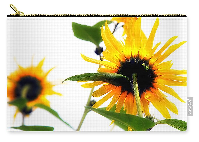 Sunflowers Carry-all Pouch featuring the photograph Sunflowers by Mal Bray