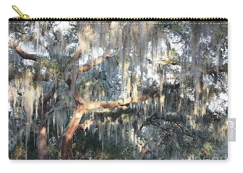 Moss Carry-all Pouch featuring the photograph Sunlight On Mossy Tree by Carol Groenen