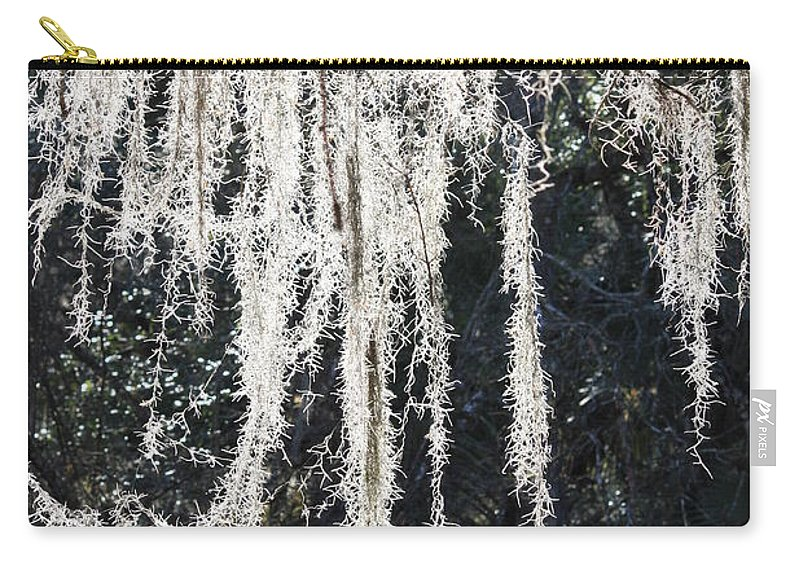 Mossy Carry-all Pouch featuring the photograph Sunlight Through Spanish Moss by Carol Groenen