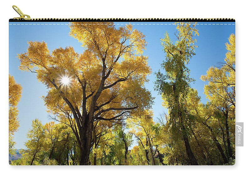 Cody Carry-all Pouch featuring the photograph Sunlight Through the Leaves by Frank Madia