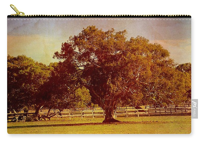 Trees Carry-all Pouch featuring the photograph Sunlit Landscape by Georgiana Romanovna