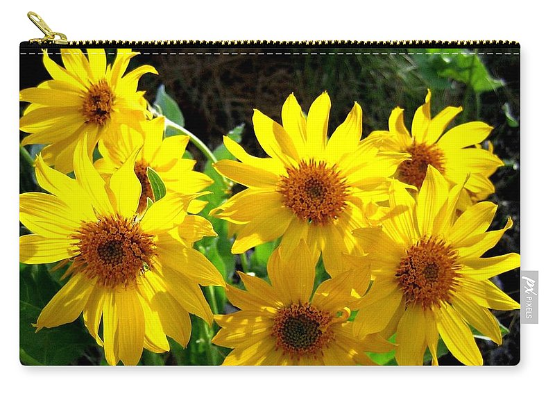 Wildflowers Carry-all Pouch featuring the photograph Sunlit Wild Sunflowers by Will Borden