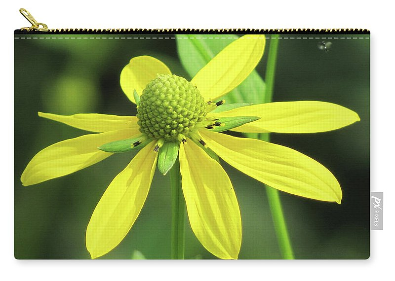 Wild Flower Carry-all Pouch featuring the photograph Sunning In The Sun by Frank Castillo