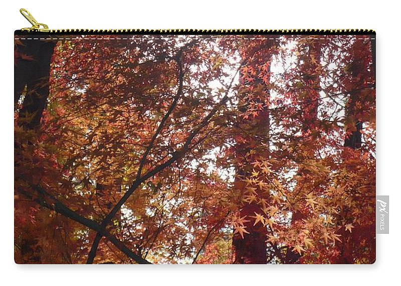 Fall Carry-all Pouch featuring the photograph Sunny Autumn Day Poster by Carol Groenen