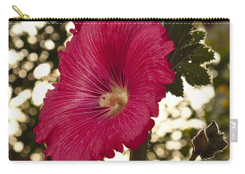Mayflower Carry-all Pouch featuring the photograph Sunny Garden Mayflower by Angelo DeVal