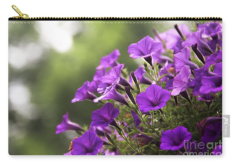 Petunia Carry-all Pouch featuring the photograph Sunny Petunias 2 by Marina McLain