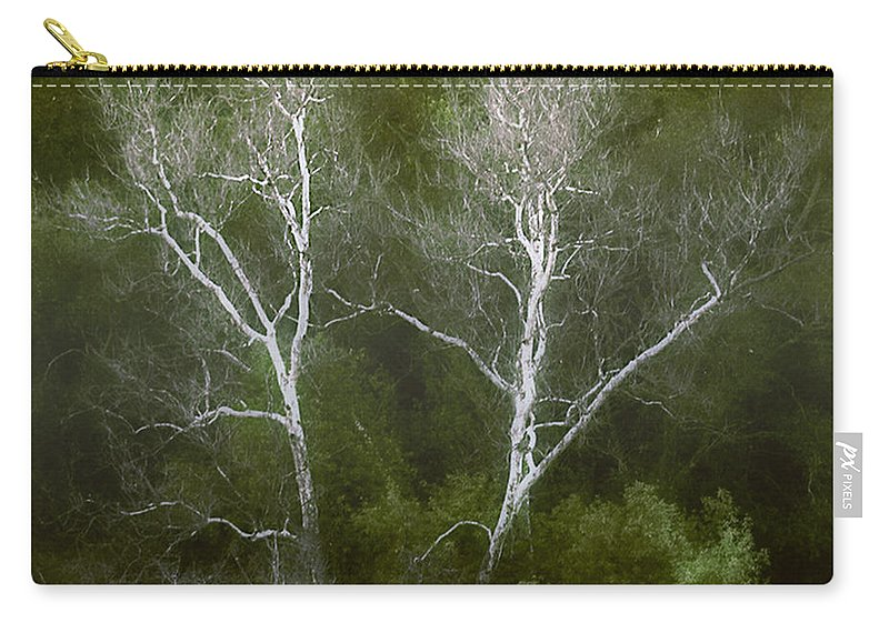Landscape Carry-all Pouch featuring the photograph Sunol - Twins by Karen W Meyer