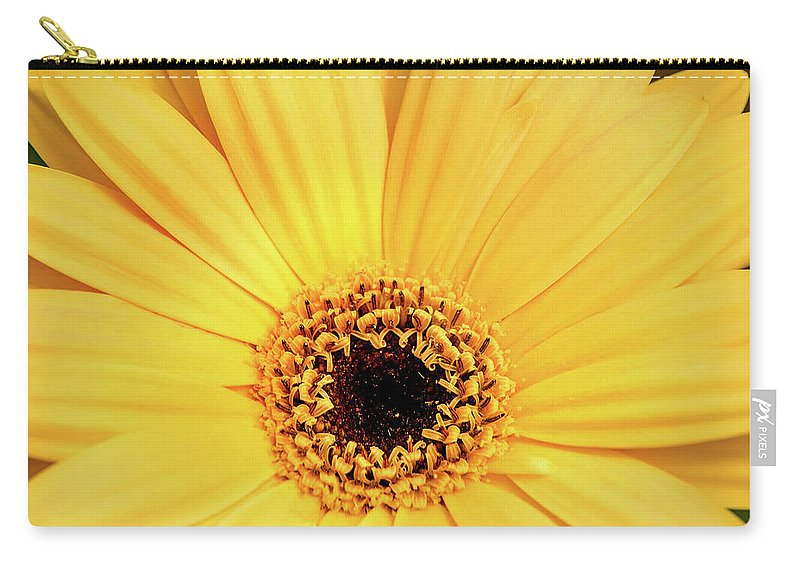 Flower Carry-all Pouch featuring the photograph Sunrise Gerbera by Don Johnson
