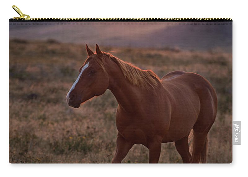 Remuda Carry-all Pouch featuring the photograph Sunrise Horse by Terri Cage