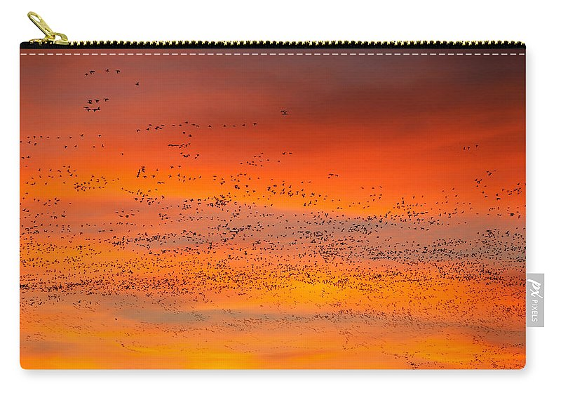 Migration Carry-all Pouch featuring the photograph Sunrise Migration by Randall Ingalls
