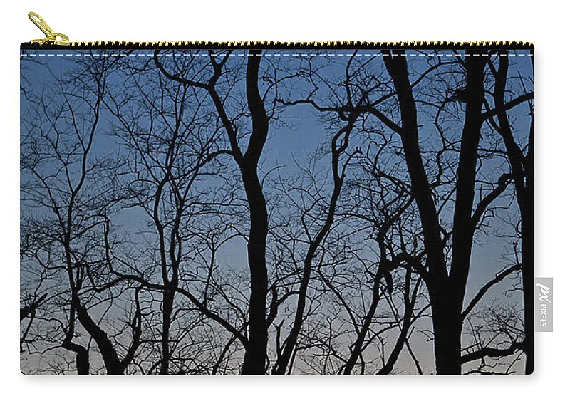 Tree Carry-all Pouch featuring the photograph Sunset Silhouette by Steve Gadomski