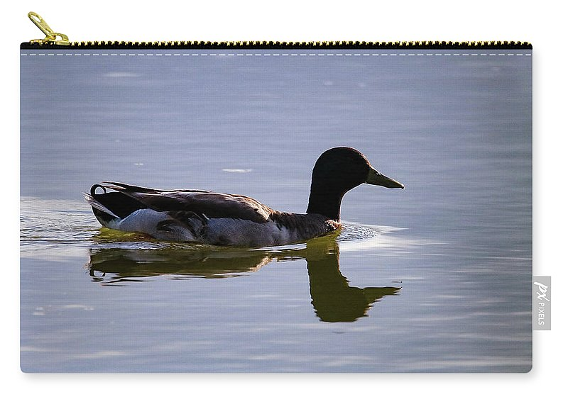 Duck Carry-all Pouch featuring the photograph Sunset Swim by Burge Darwin