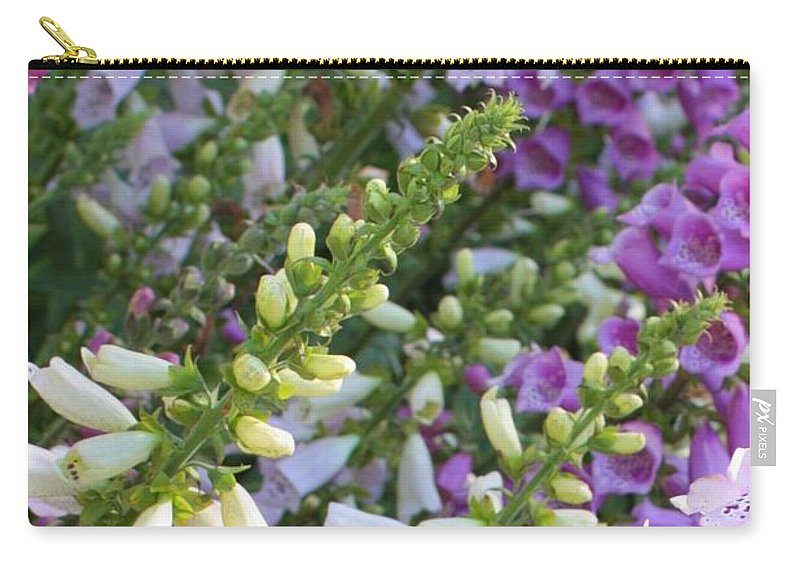 Foxgloves Carry-all Pouch featuring the photograph Sunshine On Foxgloves by Carol Groenen