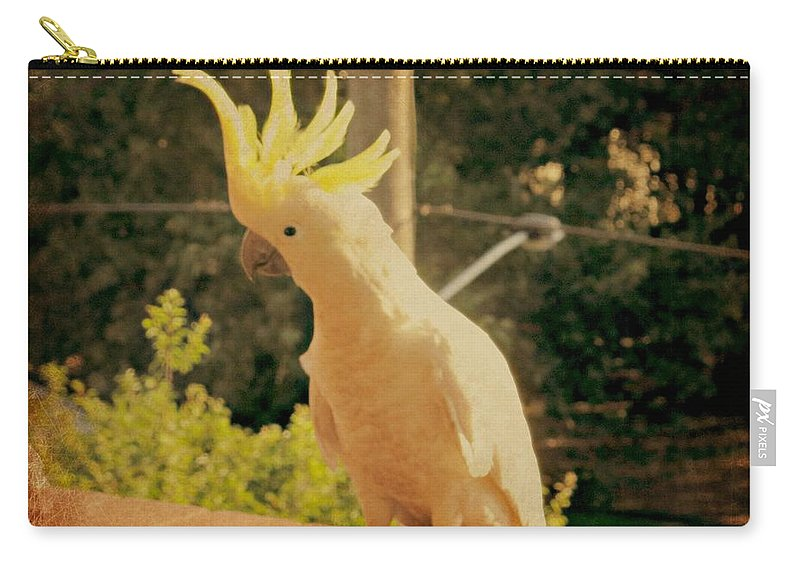 Sulphur Crested Cockatoo Carry-all Pouch featuring the photograph Sunshine On My Shoulder by Leanne Seymour