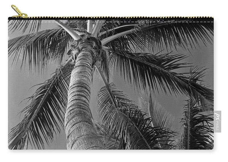 Palm Carry-all Pouch featuring the photograph Sunshine Promises by Michiale Schneider