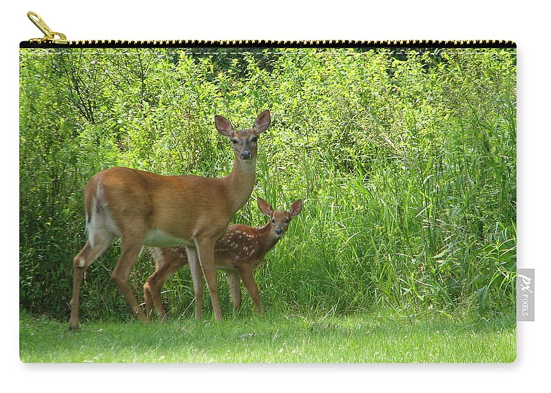 Deer Carry-all Pouch featuring the photograph Surprise by Ishwar Malleret