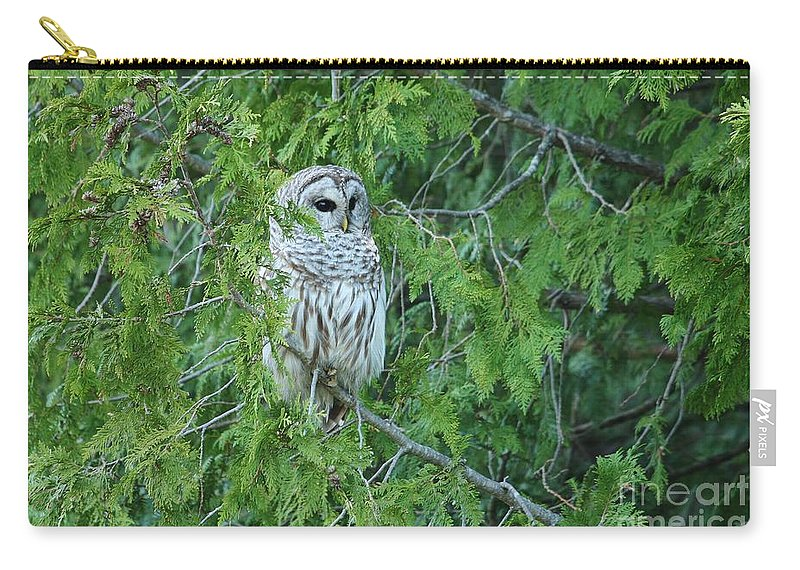 Barred Owl Carry-all Pouch featuring the photograph Surprise Visitor II by Teresa McGill