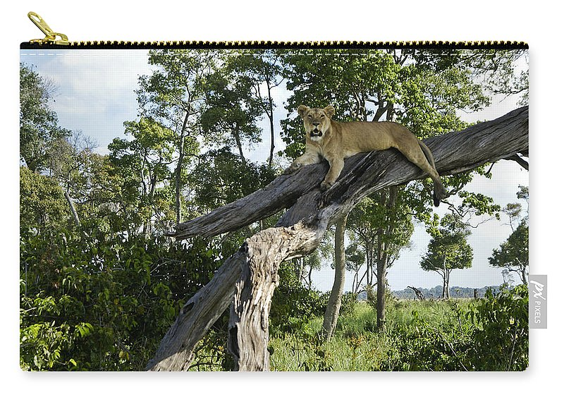 Africa Carry-all Pouch featuring the photograph Surveying The Plains by Michele Burgess