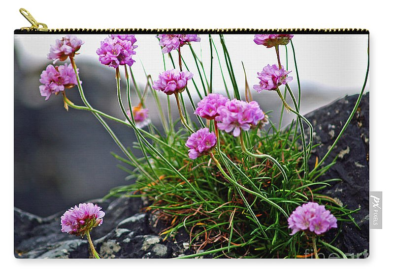 Fine Art Photography Carry-all Pouch featuring the photograph Survival Of The Fittest by Patricia Griffin Brett