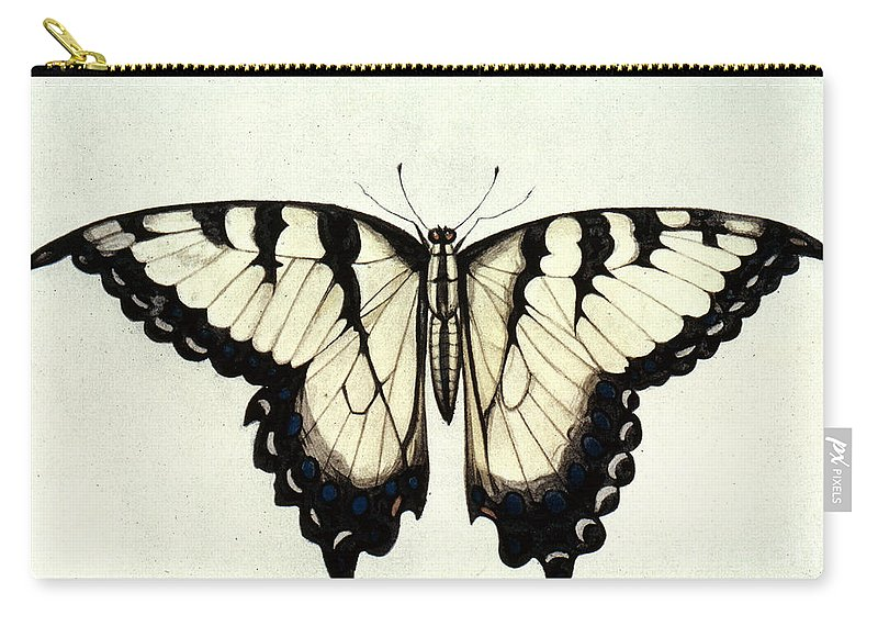 1585 Carry-all Pouch featuring the photograph Swallow-tail Butterfly by Granger