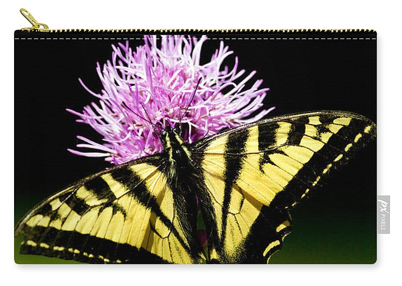 Flora Carry-all Pouch featuring the photograph Swallowtail by Randall Ingalls