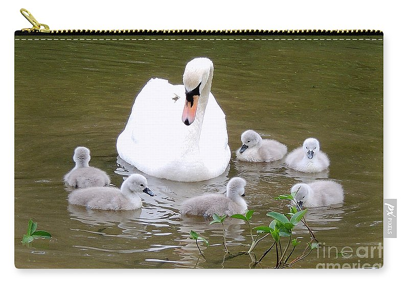 Swans Carry-all Pouch featuring the photograph Swan Lake 1 by Bill Holkham