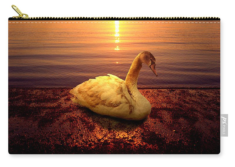 Animal Carry-all Pouch featuring the photograph Swan Lake by Yuri Lev