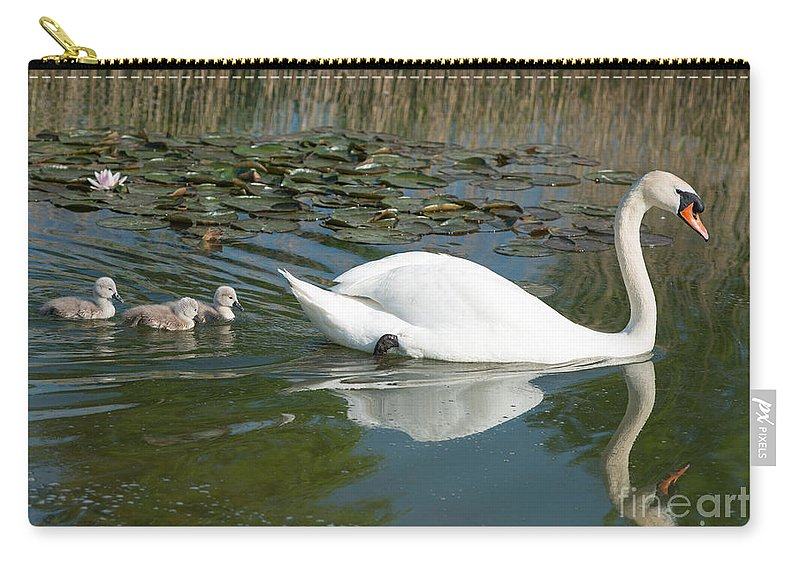 Swan Carry-all Pouch featuring the photograph Swan Scenic by Andrew Michael