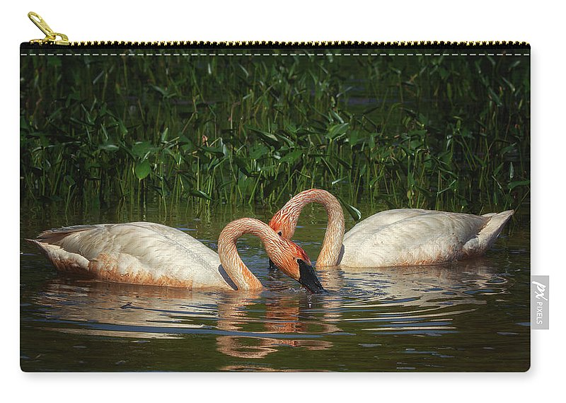 Swans Carry-all Pouch featuring the photograph Swans In A Pond by Richard Kopchock