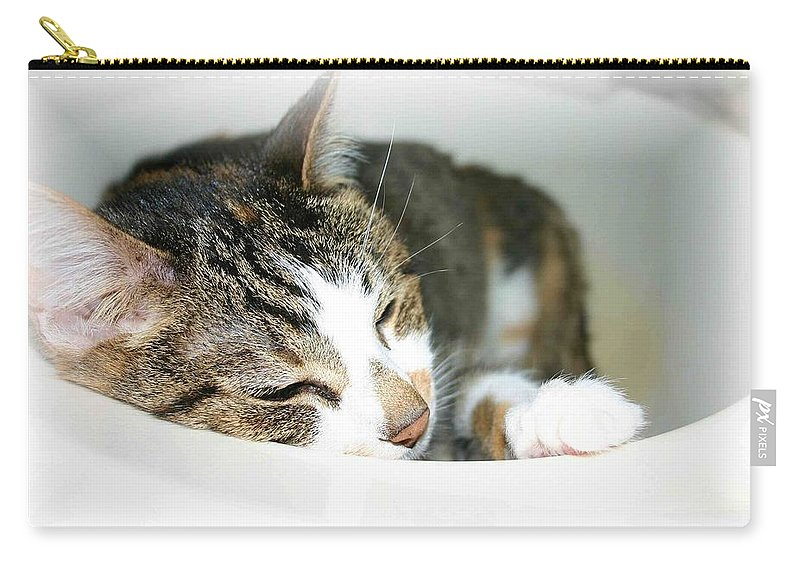 Cat Carry-all Pouch featuring the photograph Sweet Dreams by Nelson Strong