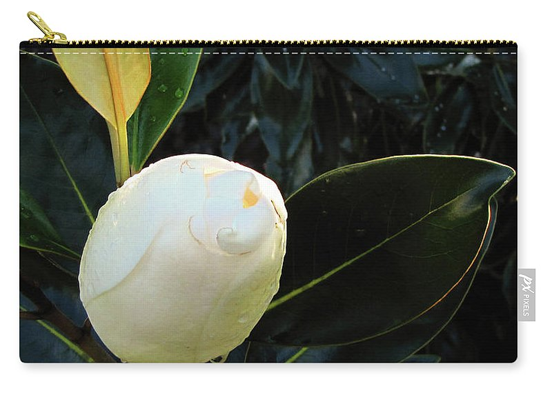 Nature Carry-all Pouch featuring the photograph Sweet Promise by Peg Urban