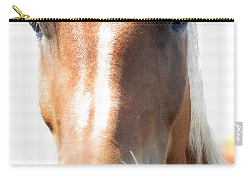 Horse Carry-all Pouch featuring the photograph Sweetie by Amanda Barcon