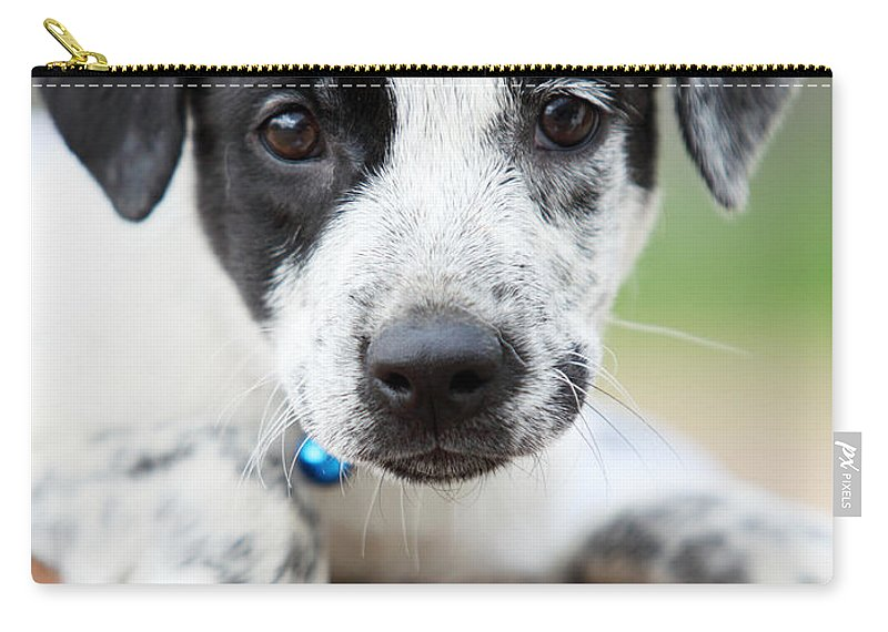 Puppy Carry-all Pouch featuring the photograph Sweetness by Amanda Barcon
